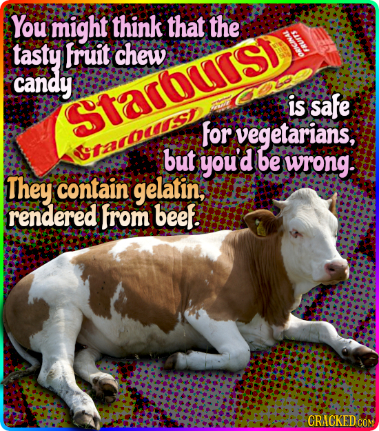 You might think that the 10M/ tasty fruit chew candy is safe Starurst for vegetarians, but youd be wrong. They contain gelatin; rendered from beef! CR