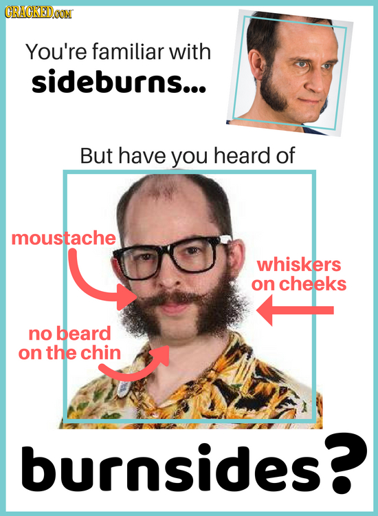 CRACKEDCON You're familiar with sideburns... But have you heard of moustache whiskers on cheeks no beard on the chin burnsides