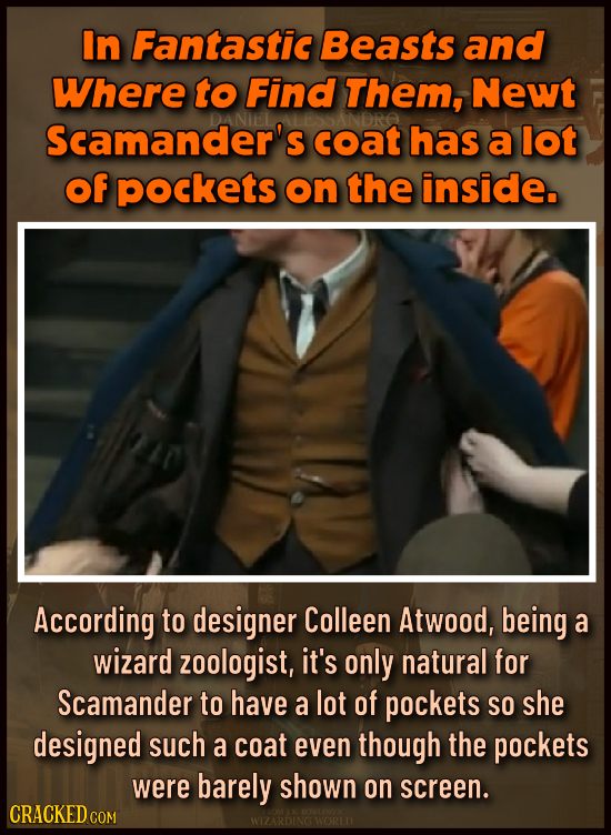 In Fantastic Beasts and Where to Find Them, Newt Scamander's coat has a lot of pockets on the inside. According to designer Colleen Atwood, being a wi