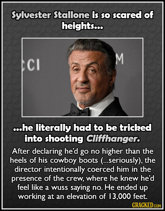 Sylvester Stallone is So scared of heights... M CI ...he literally had to be tricked into shooting Cliffhanger. After declaring he'd go no higher than