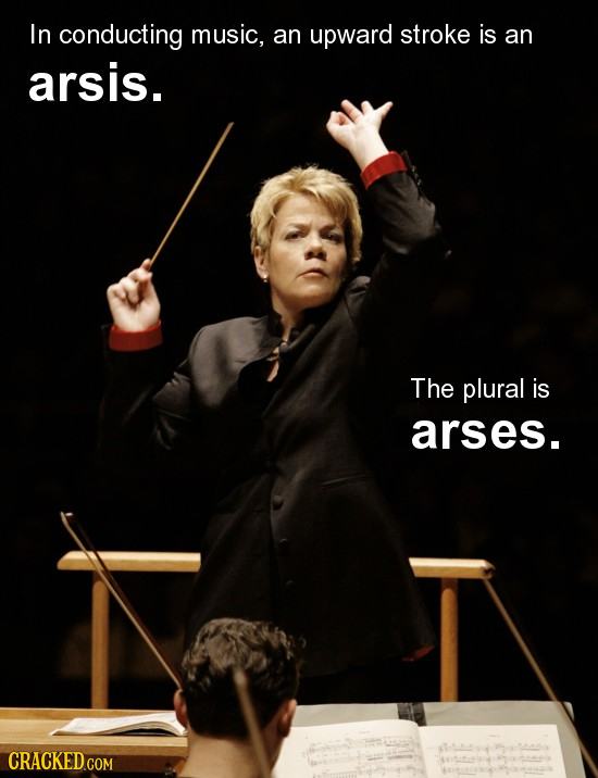 In conducting music, an upward stroke is an arsis. The plural is arses. CRACKED.GOM