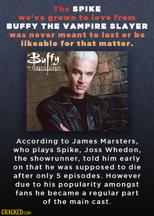 The SPIKE welve grown to love from BUFFY THE VAMPIRE SLAYER was never meant to last or be likeable for that matter. Buffy the ampire Slauer According