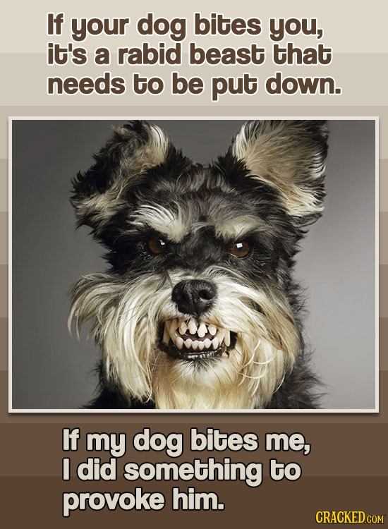 If your dog bites you, it's a rabid beast that needs to be put down. If my dog bites me, I did something to provoke him.