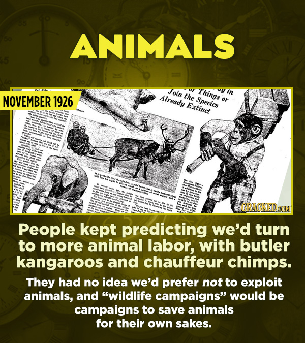 15 Really Inaccurate Predictions About The Future - People kept predicting we'd turn to more animal labor, with butler kangaroos and chauffeur chimps.