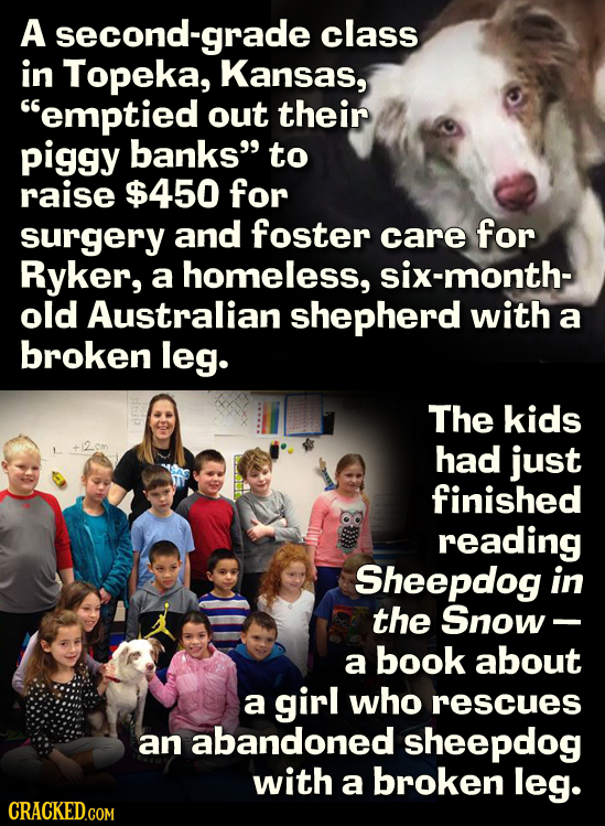 A second-grade class in Topeka, Kansas, emptied out their piggy banks to raise $450 for surgery and foster care for Ryker, a homeless, six-month- ol