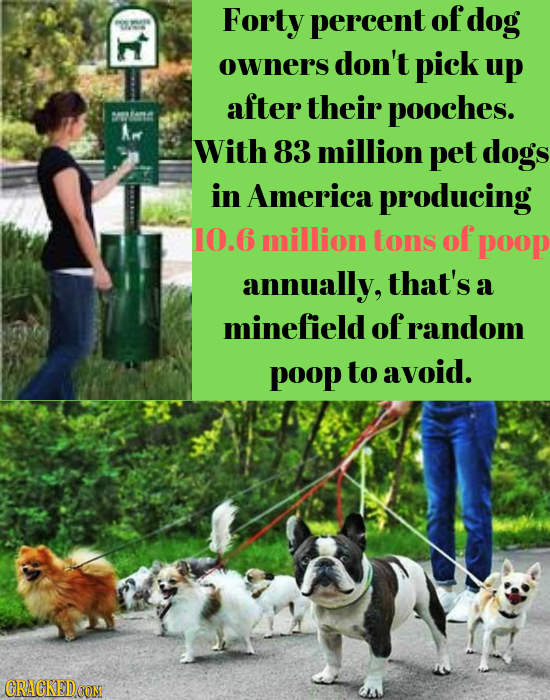 Forty percent of dog E owners don't pick up after their pooches. With 83 million pet dogs in America producing 10.6 million tons of poop annually, tha