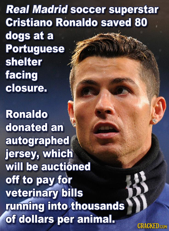 Real Madrid soccer superstar Cristiano Ronaldo saved 80 dogs at a Portuguese shelter facing closure. Ronaldo donated an autographed jersey, which will