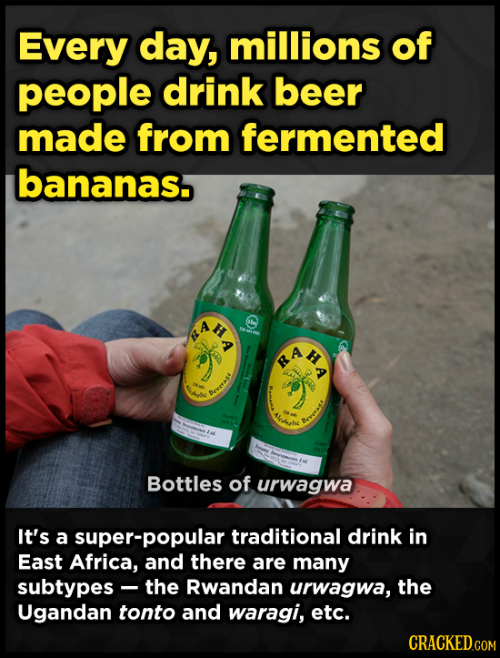 Every day, millions of people drink beer made from fermented bananas. H A HA obh c OVAA celecle Bottles of urwagwa It's a super-popular traditional dr
