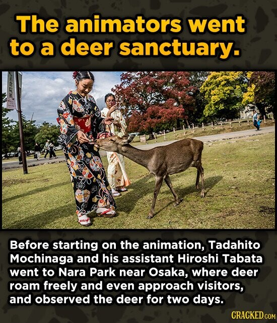 The animators went to a deer sanctuary. Before starting on the animation, Tadahito Mochinaga and his assistant Hiroshi Tabata went to Nara Park near O