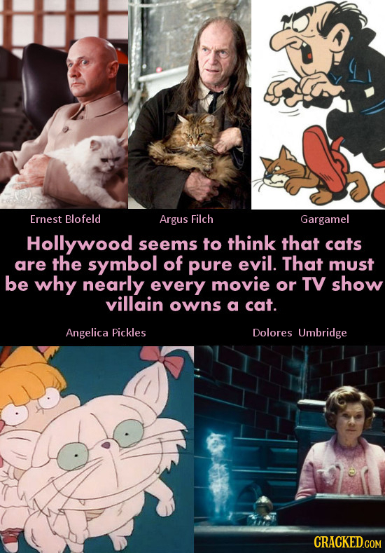 Ernest Blofeld Argus Filch Gargamel Hollywood seems to think that cats are the symbol of pure evil. That must be why nearly every movie or TV show vil