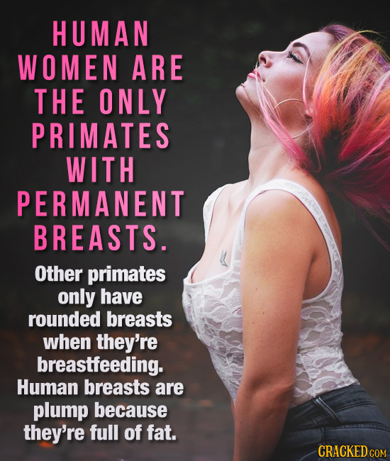 HUMAN WOMEN ARE THE ONLY PRIMATES WITH PERMANENT BREASTS. Other primates only have rounded breasts when they're breastfeeding. Human breasts are plump