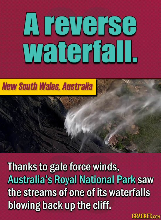15 Of The Strangest Things 2020 Managed To Cook Up (Part 2) - A reverse waterfall  Thanks to gale force winds, Australia's Royal National Park saw the