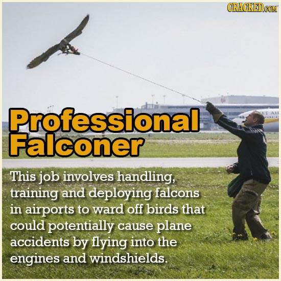 21 Badass Jobs You Won't Believe Are A Real Thing