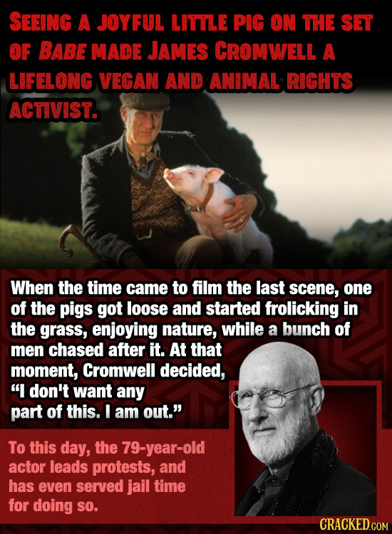 SEEING A JOYFUL LITTLE PIG ON THE SET OF BABE MADE JAMES CROMWELL A LIFELONG VEGAN AND ANIMAL RIGHTS ACTIVIST. When the time came to film the last sce