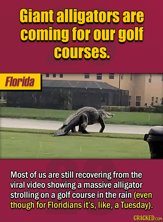 15 Of The Strangest Things 2020 Managed To Cook Up (Part 2) - Giant alligators are coming for our golf courses. Most of us are still recovering from t