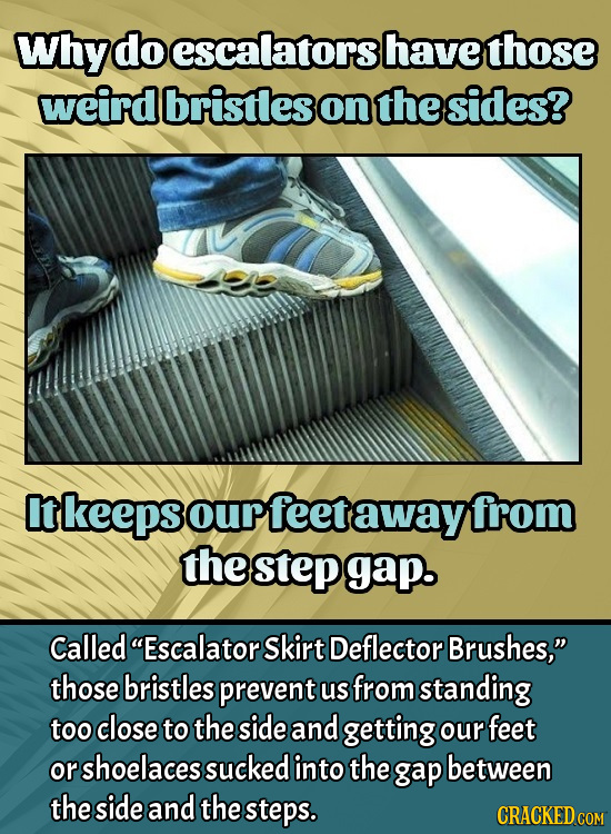 Why do escalators have those weird bristles on the sides? It keeps our feet away from the step gap. Called Escalator Skirt Deflector Brushes, those