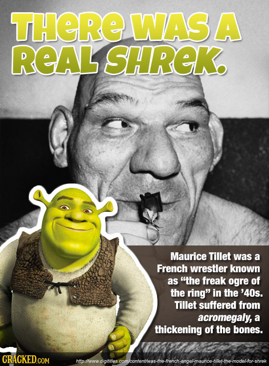 THERE WASA REAL SHREK Maurice Tillet was a French wrestler known as the freak ogre of the ring in the '40s. Tillet suffered from acromegaly, a thick