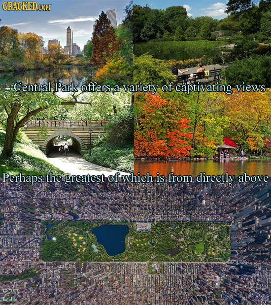 Central. Park offers a variety of captivating views Perhaps the greatest of which is from directly above