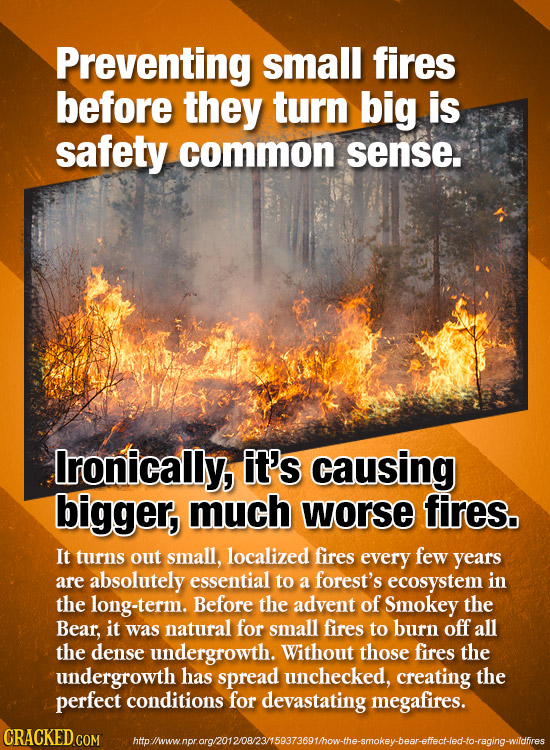 Preventing small fires before they turn big is safety common sense. Ironically, it's causing bigger, much worse fires. It turns out small, localized f