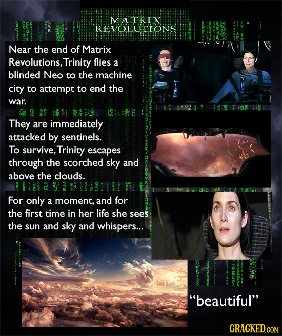 MATRI YSEY REVOLUTTONS Near the end of Matrix Revolutions, Trinity flies a blinded Neo to the machine city to attempt to end the war. F S They are imm