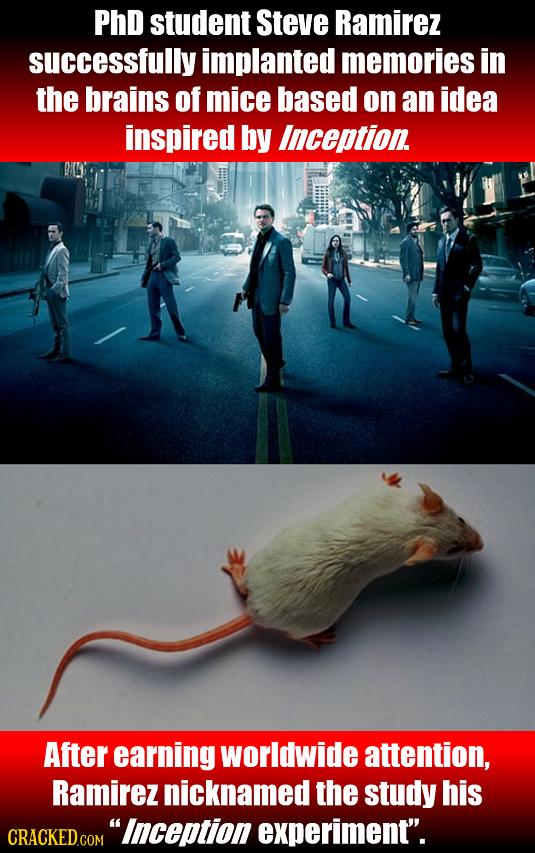 PhD student Steve Ramirez successfully implanted memories in the brains of mice based on an idea inspired by Inception After earning worldwide attenti