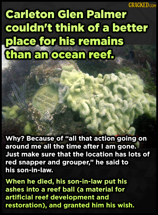 CRACKEDco Carleton Glen Palmer couldn't think of a better place for his remains than an ocean reef. 281 es Why? Because of all that action going on a