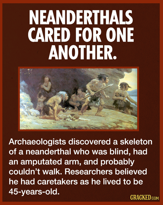NEANDERTHALS CARED FOR ONE ANOTHER. Archaeologists discovered a skeleton of a neanderthal who was blind, had an amputated arm, and probably couldn't w