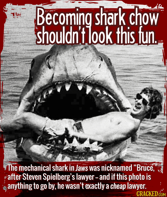 "Becoming shark chow shouldn't look this fun. - The mechanical shark in Jaws was nicknamed ""Bruce,"" after Spielberg's lawyer -- and if this photo is an"
