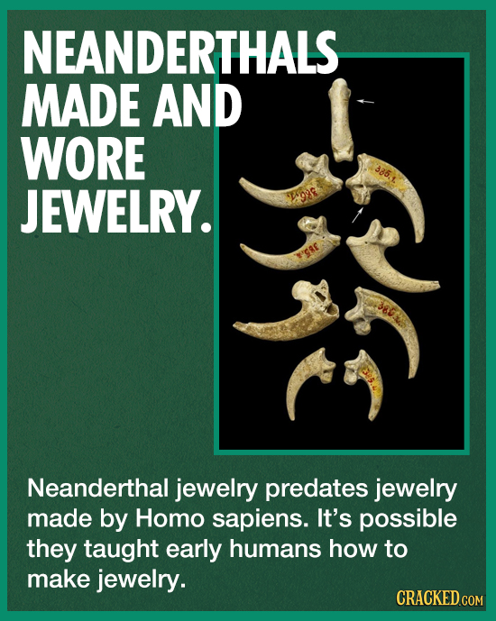 NEANDERTHALS MADE AND WORE 385.1 JEWELRY. Neanderthal jewelry predates jewelry made by Homo sapiens. It's possible they taught early humans how to mak