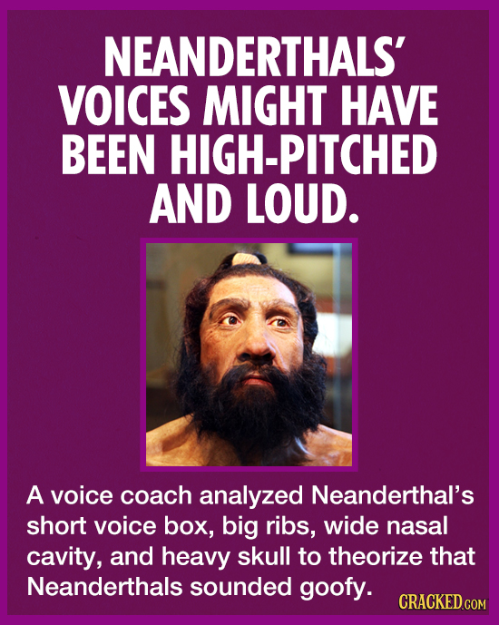 NEANDERTHALS' VOICES MIGHT HAVE BEEN HIGH-PITCHED AND LOUD. A voice coach analyzed Neanderthal's short voice box, big ribs, wide nasal cavity, and hea