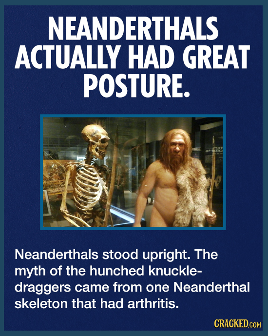 NEANDERTHALS ACTUALLY HAD GREAT POSTURE. Neanderthals stood upright. The myth of the hunched knuckle- draggers came from one Neanderthal skeleton that