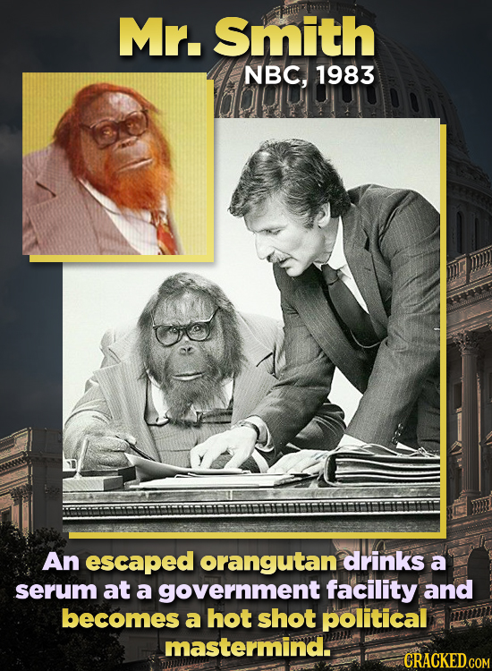Mr. Smith NBC, 1983 An escaped orangutan drinks a serum at a government facility and becomes a hot shot political mastermind. CRACKED.COM