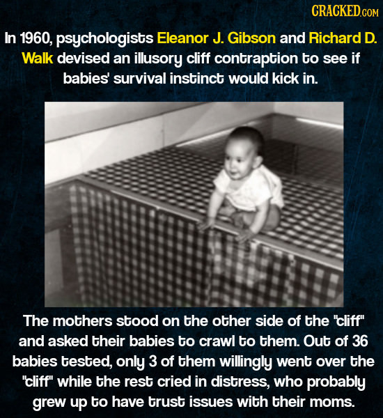 CRACKEDCON In 1960, psychologists Eleanor J. Gibson and Richard D. Walk devised an illusory cliff contraption to see if babjes' survival instinct woul