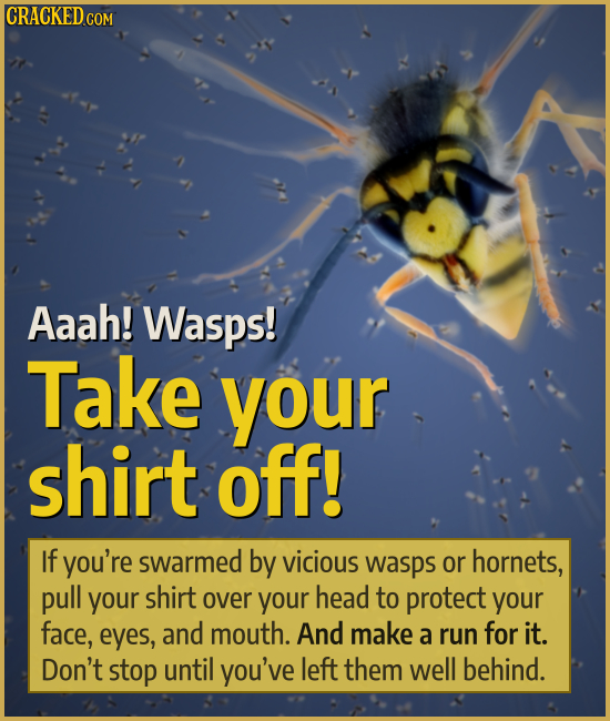 CRACKED.COM Aaah! Wasps! Take your shirt off! If you're swarmed by vicious wasps or hornets, pull your shirt over your head to protect your face, eyes