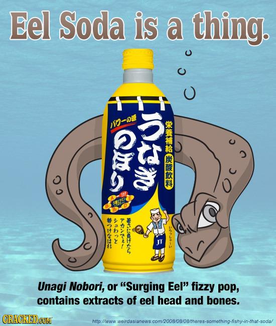 Eel Soda is a thing. 1-QU E CC 40N ORAAEKLS t ARARA Unagi Nobori, or Surging Eel fizzy pop, contains extracts of eel head and bones. nowrs.com/20080