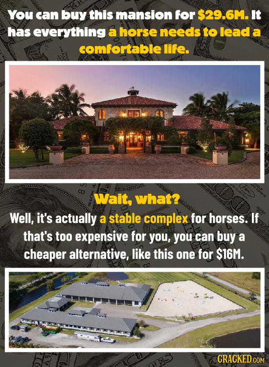 You can buy this mansion for $29.6M. It has everything a horse needs to lead a comfortable life. Wait, what? Well, it's actually a stable complex for