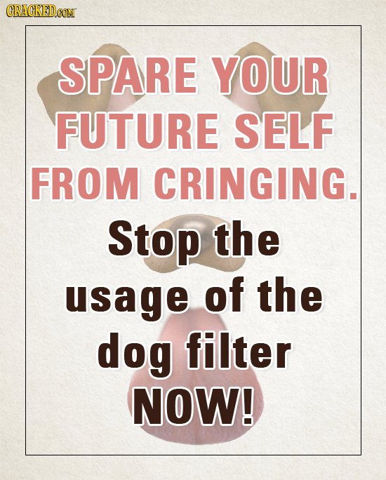 CRACKEDCON SPARE YOUR FUTURE SELF FROM CRINGING. Stop the usage of the dog filter NOW!