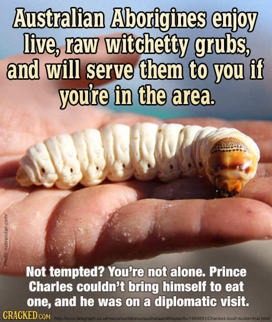 Australian Aborigines enjoy live, raw witchetty grubs, and will serve them to you if you're in the area. PHOto Photo. Not tempted? You're not alone. P