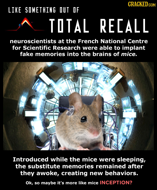 CRACKED.COM LIKE SOMETHING DUT DF TOTAL RECALL neuroscientists at the French National Centre for Scientific Research were able to implant fake memorie
