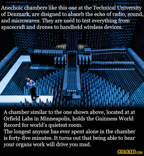 Anechoic chambers like this one at the Technical University of Denmark, are disigned to absorb the echo of radio, sound, and microwaves. They are used