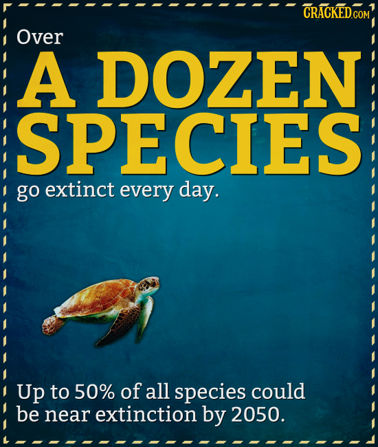 CRACKEDGOM Over A DOZEN ISPECIES go extinct every day. Up to 50% of all species could be near extinction by 2050.