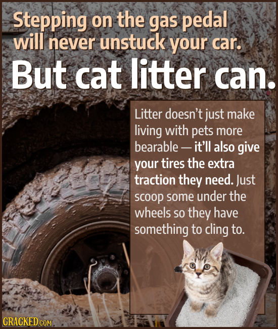 Stepping on the gas pedal will never unstuck your car. But cat litter can. Litter doesn't just make living with pets more bearable - it'll also give y
