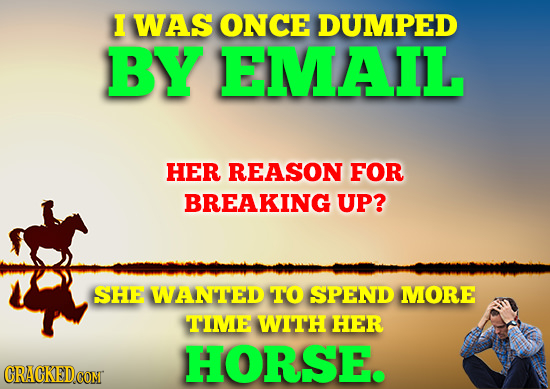 I WAS ONCE DUMPED BY EMAIL HER REASON FOR BREAKING UP? SHE WANTED TO SPEND MORE TIME WITH HER HORSE. CRACKEDCON