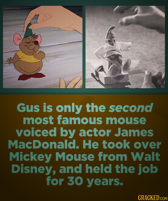 Gus is only the second most famous mouse voiced by actor James MacDonald. He took over Mickey Mouse from Walt Disney, and held the job for 30 years. C
