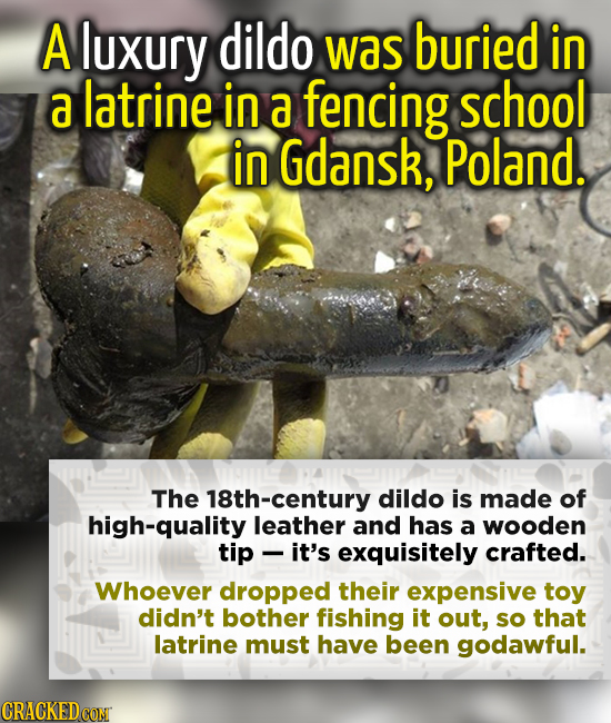 A luxury dildo was buried in a latrine in a fencing school in Gdansk, Poland. The 18th-century dildo is made of high-quality leather and has a wooden