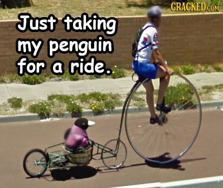 CRACKEDCON Just taking my penguin for a ride.