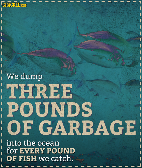 COM We dump THREE POUNDS OF GARBAGE into the ocean for EVERY POUND OF FISH we catch.