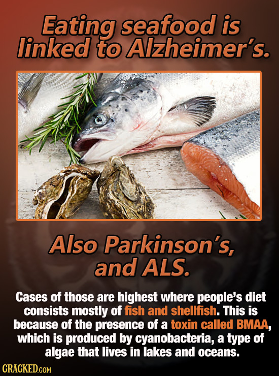 Eating seafood is linked to Alzheimer's. Also Parkinson's, and ALS. Cases of those are highest where people's diet consists mostly of fish and shellfi