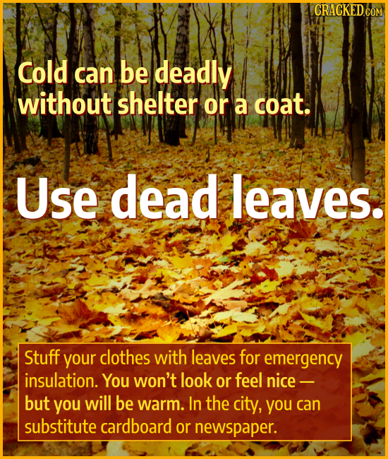 CRACKED COM Cold can be deadly without shelter Or a coat. Use dead leaves. Stuff your clothes with leaves for emergency insulation. You won't look or