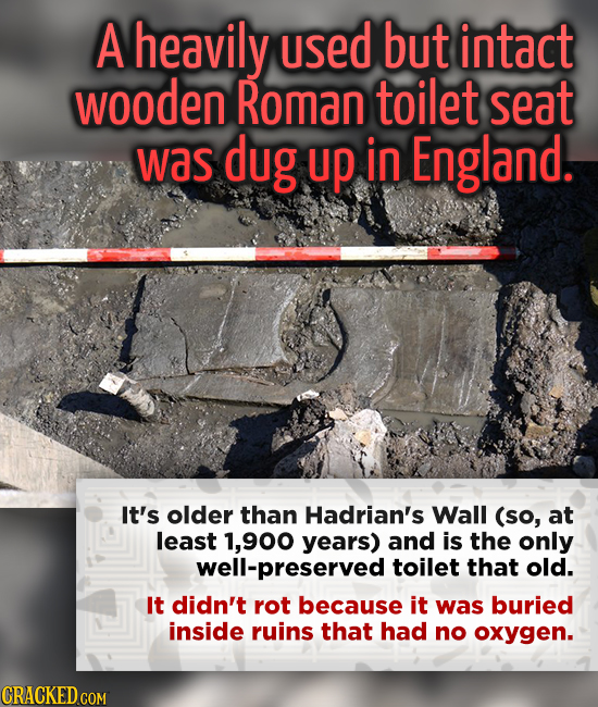A heavily used but intact wooden Roman toilet seat was dug up in England. It's older than Hadrian's Wall (so, at least 1,900 years) and is the only we